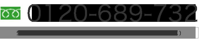 0120-689-732